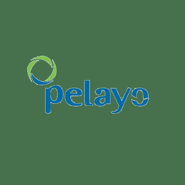 PELAYO.png